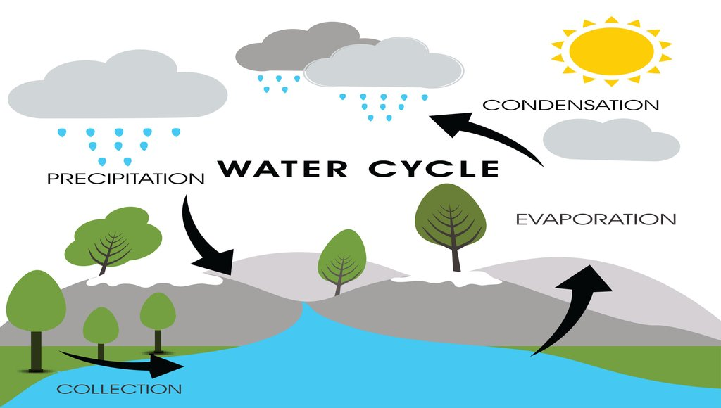 How Rain Is Formed Definition Examples Diagrams